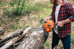 How To Cut Logs Into Lumber
